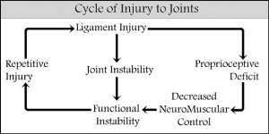 Cycle of Injury to a Spinal Joint